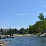 Great Fly Fishing in Western Montana in the Montana Fishing Company Report