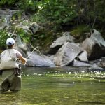 Warm Water and Decent Fishing in the Missoula Fly Fishing Report