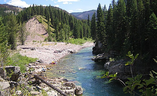 South Fork of the Flathead River is Fishing Well