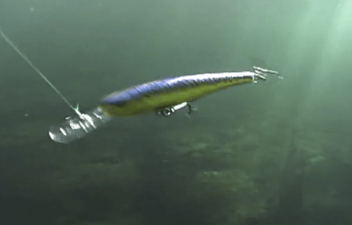 What Does A Rapala Look Like Underwater? – Video