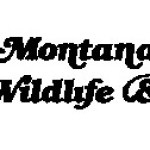 Montana Fish, Wildlife and Parks from The Beginning