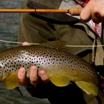 Montana Fly Fishing Report with Scott Anderson