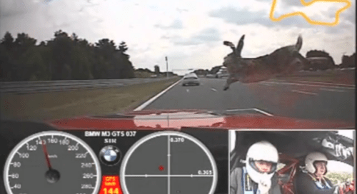 shh-bmw-e92-m3-gts-is-hunting-rabbits-video-62882-7