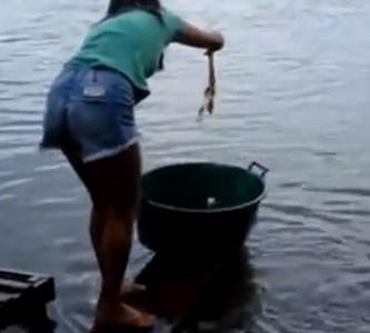 fishingforpiranhas