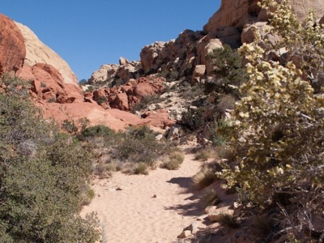 Calico tanks trail - 05.03.2012 - 19.07.58