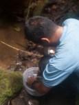 Preparing crabs