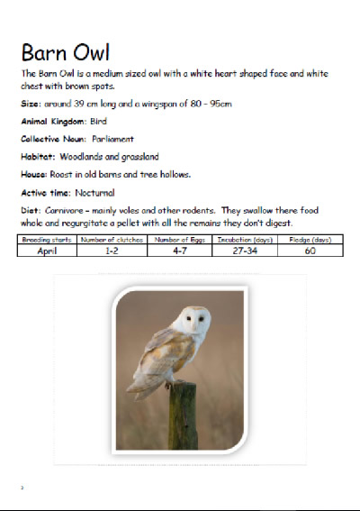 Animal Information pack for Forest Schools