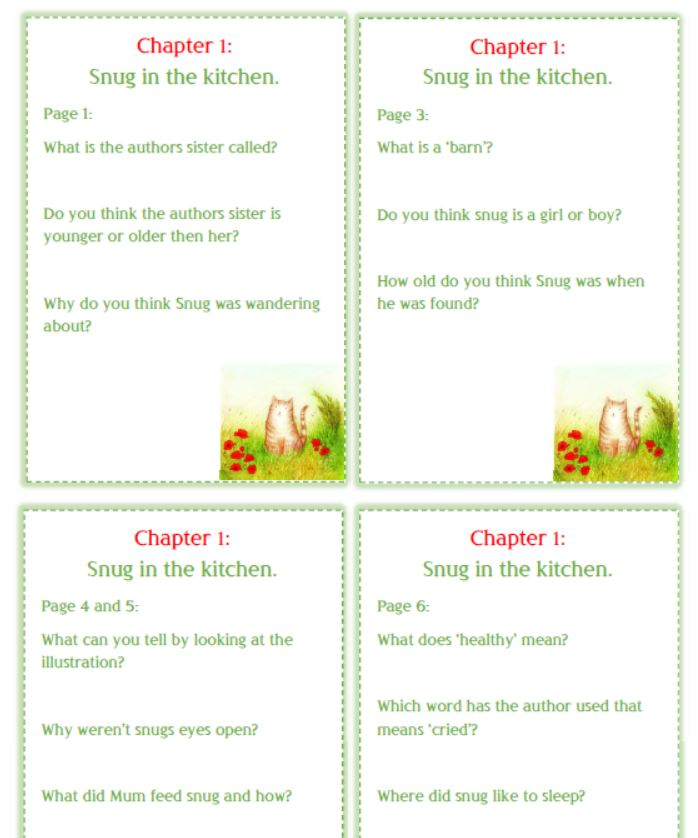 Snug guided reading question cards