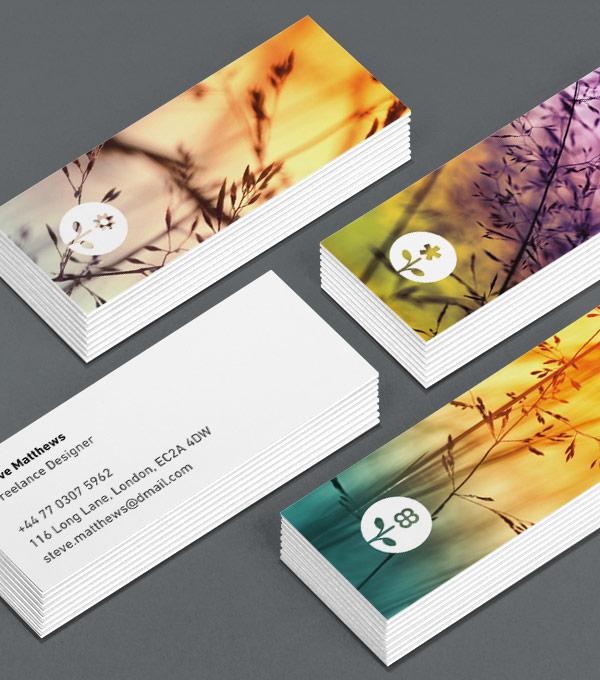 moo brochure - Seckinayodhya