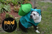 Mood DIY: Bulbasaur Dog Halloween Costume - Mood Sewciety