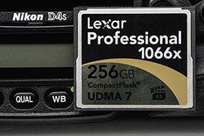 lexar256