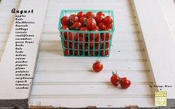 Seasonal Produce Guide August