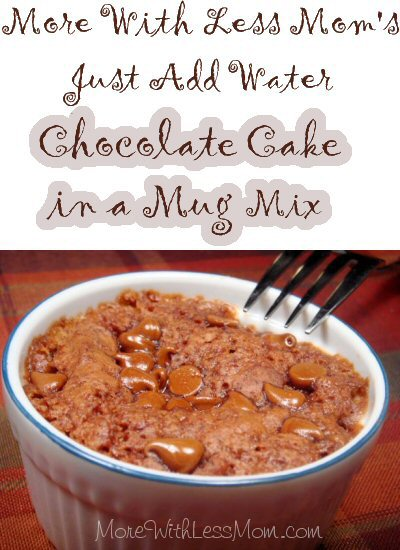 Just Add Water Chocolate Mug Cake Mix Recipe from More With Less Mom