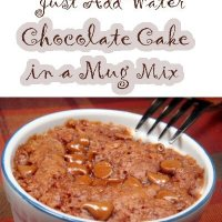 Linda Loo's Just Add Water Chocolate Mug Cake Mix Recipe