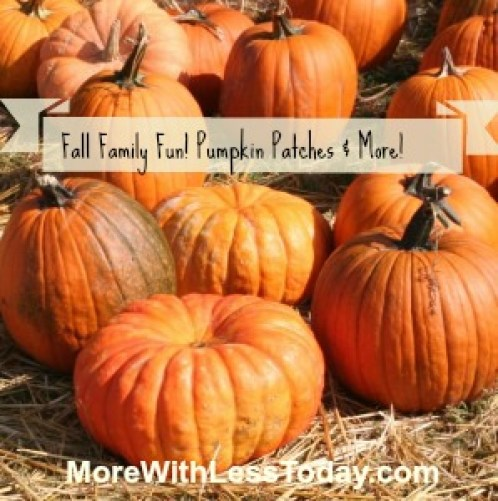 pumpkins-with pic monkey