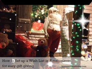 wish list Amazon