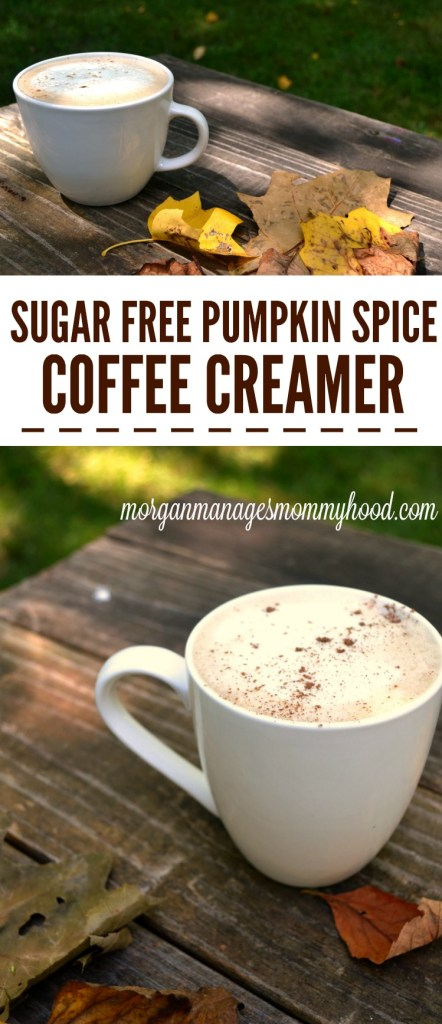 If you're a pumpkin spice fan, you're going to love this Sugar Free Pumpkin Spice Coffee creamer - it has all of your favorite flavors of fall but without all of the sugar!