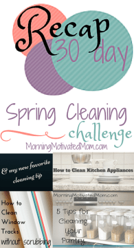 30 Day Spring Cleaning Challenge Recap Homemaking Bundle