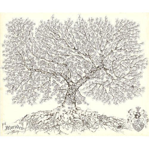 Medium Crop Of Family Tree Picture