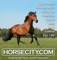 Horsecity logo 2