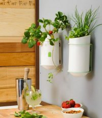 20 Nice Kitchen Wall Decors And Ideas | MostBeautifulThings