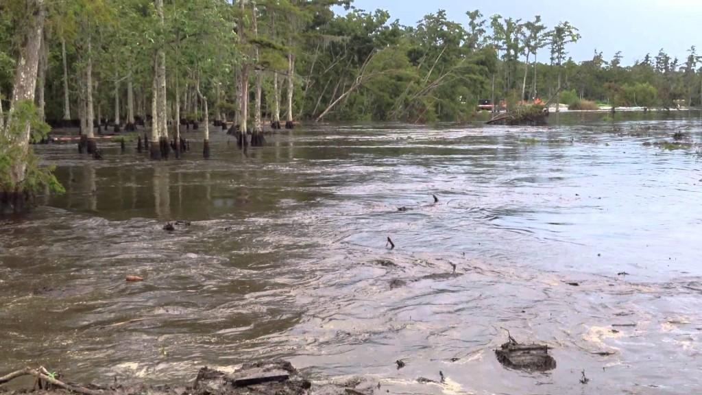 24 Wallpaper Hd Louisiana Sinkhole Swallows A Dozen Trees In Just Seconds