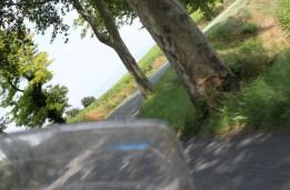 Treelined corners