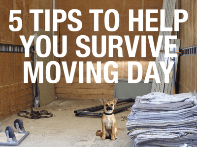 5 Tips to Help You Survive Moving Day : Movearoo Moving Blog