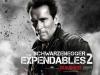 Arnold Schwarzenegger (via ComingSoon.net)