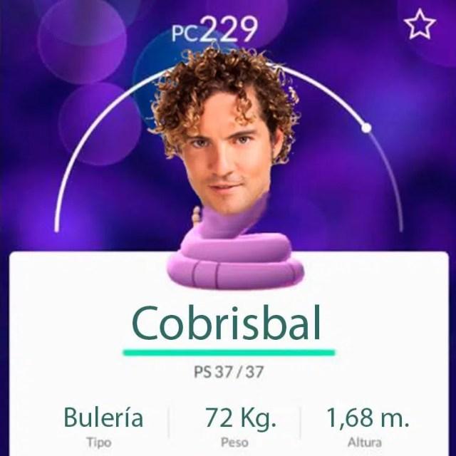 Pokémon de David Bisbal