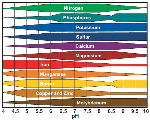 nutrient-uptake-ph-chart - Moyers Lawn Service and Landscaping - ph chart