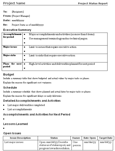project plan summary template - Ozilalmanoof - sample project summary template