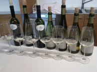 Wine tasting in Tramin