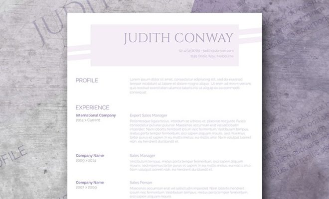 Why using a Professional Resume Template is better than a DIY Resume