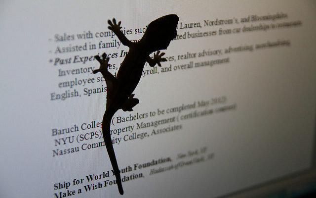 7 Uncommon Ways to Make Your Resume Look More Impressive - Ms