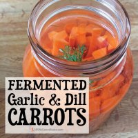 Fermented Garlic & Dill Carrots