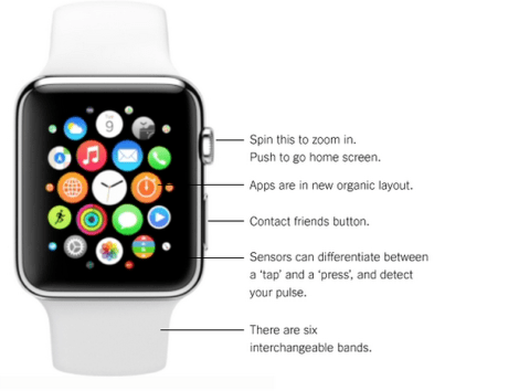 Everything You Wanted To Know About the New Apple Watch
