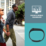 Summer is here! I ordered the Fitbit Flex!