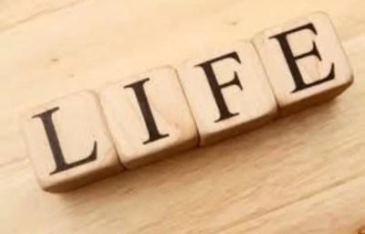 أمثال وعبر عن الحياة - موقع محتوى