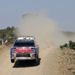 Citroen Fiesta del Rally