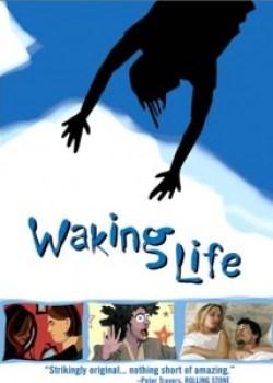 despertando_para_vida_capa