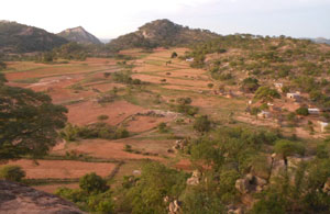 The Madzoke valley in the heart of Mazvihwa.  Each hill is the ancestral stronghold (nhare) of our one of our founding families. Intensive farming of the sandy soils and natural wetlands in between requires great attention to managing water and soil structure and fertility over many years