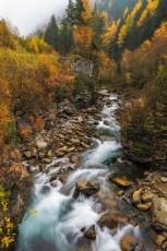 Stream-Through-Autumn
