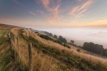 Valley-Of-Mist