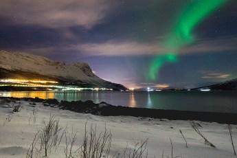 Dancing-Narvik