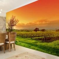 Wall mural Sunset in the vineyard | MuralDecal.com