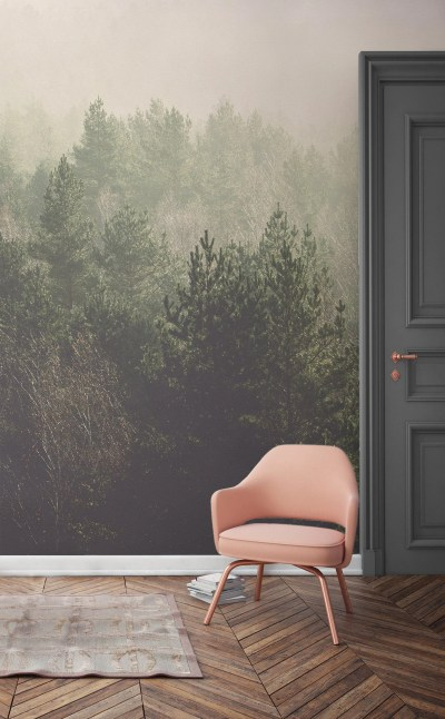 11 Forest Wallpapers That Will Breathe Life Into Your Home | Murals Wallpaper