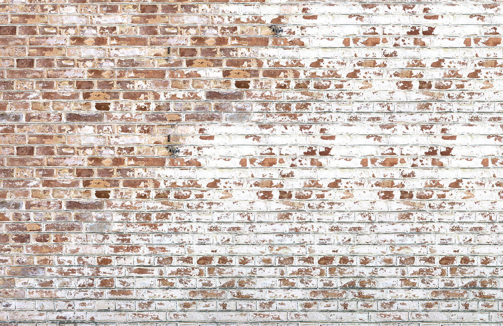 Black And Grey Wallpaper White Paint Bricks Wall Mural Muralswallpaper Co Uk