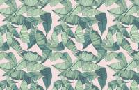 Pink and Green Tropical Leaf Wallpaper - Murals Wallpaper
