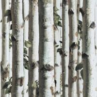 Designer Wallpaper Forest Koziel - MurivaMuriva